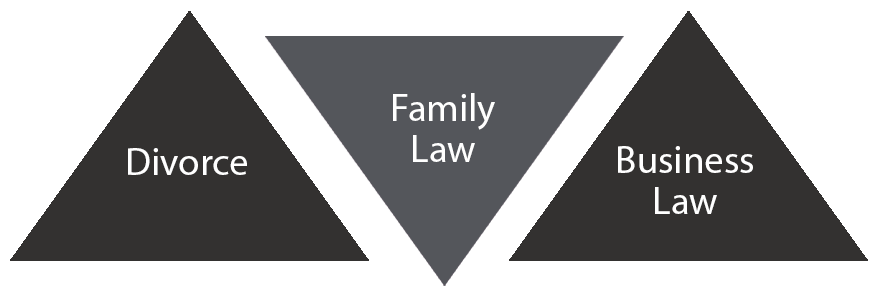 divorce, family and business law